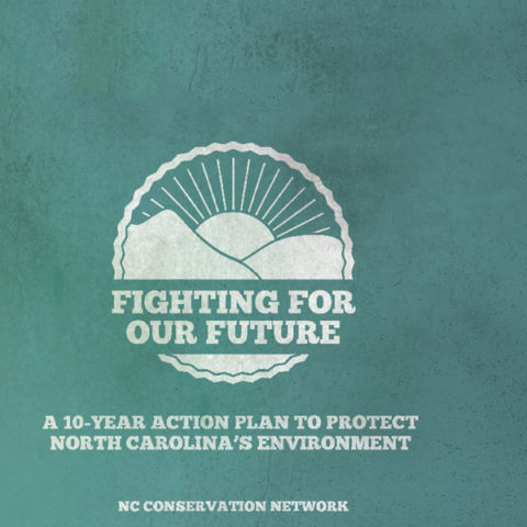 nccn-10-year-plan-banner4
