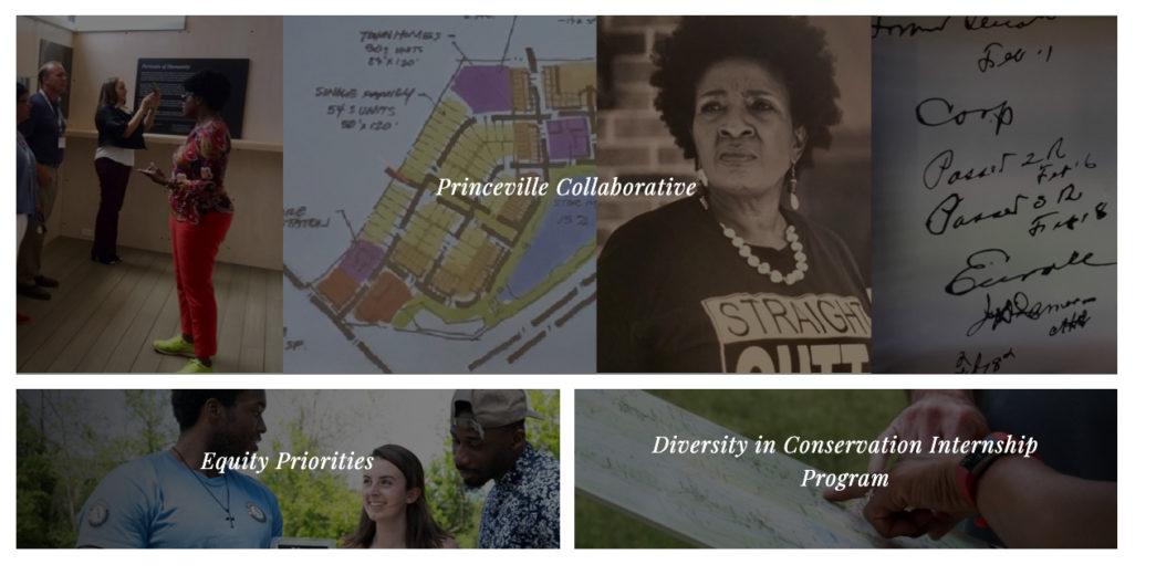 CTNC Website - Equity - 2