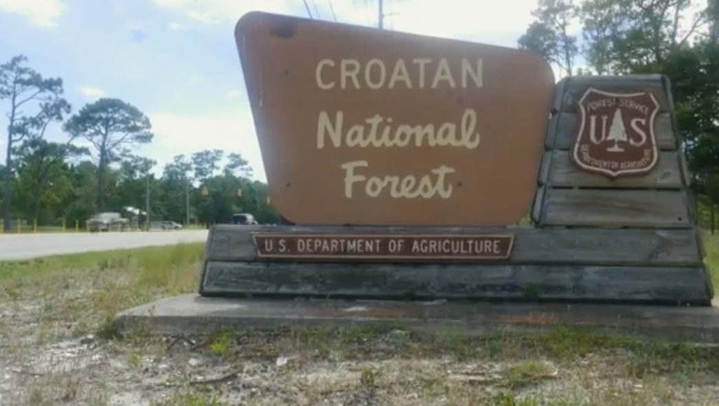 Sign for Croatan National Forest