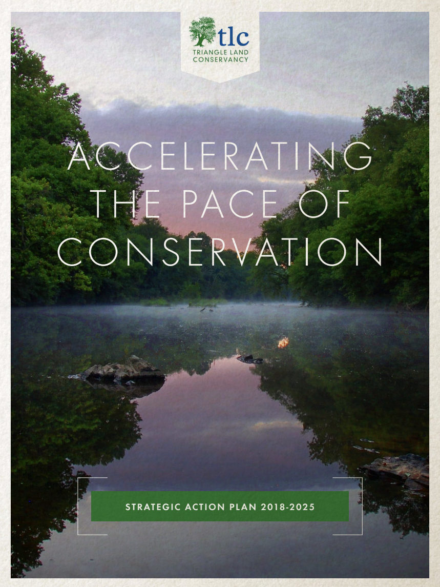 TLC Strategic Plan - PDF Cover