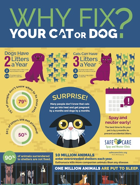 SAFE Haven For Cats SafeCare_Poster_01-WhyFix_Infographic-PRINT